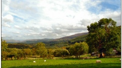 View from Tal y Waen Holiday Cottages
