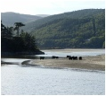 The view of the Mawddach Estuary from Penmaenpool